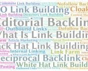 Salterra SEO Company specializes in quality, clean link building